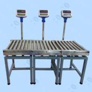 厂家专业定制全自动/无动力滚筒电子秤