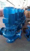 立式管道排污泵价格